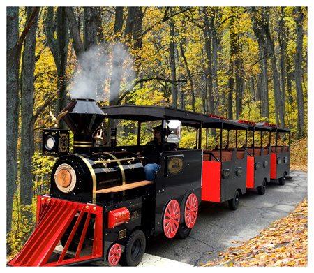 Bellatori Trackless Train