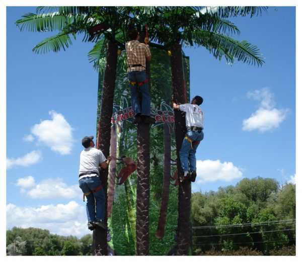 Coconut Climb Rock Wall Rental