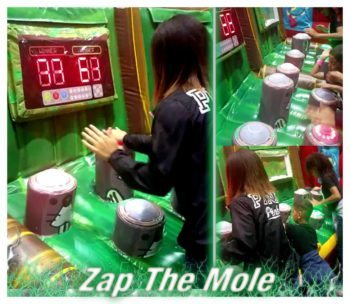 Zap A Mole Carnival Game Rental