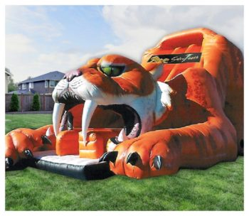 Sabretooth Tiger Slide